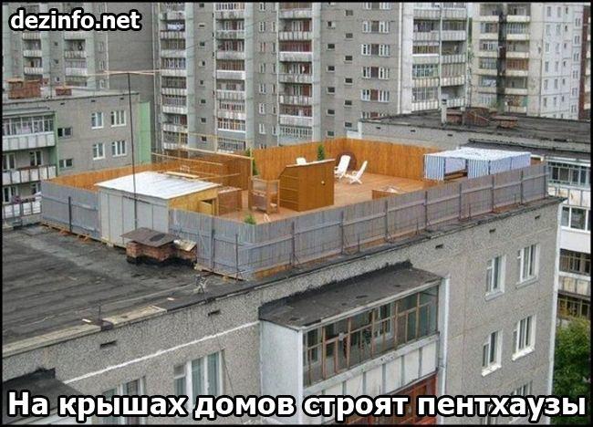 Российские традиции (25 фото)