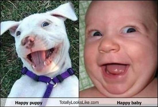 Смешные сходства (95 фото)