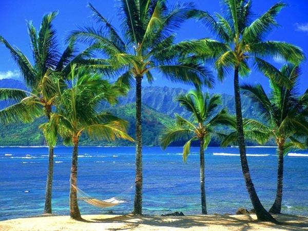 Сказочные пляжи (46 фото)